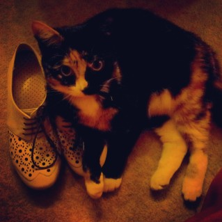 Also Tilly loves shoes